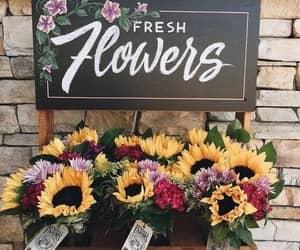 flowers, sunflower, and beautiful image