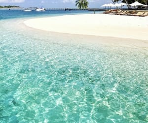 summer, beach, and Maldives image