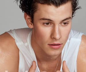 boys, singer, and shawn mendes image