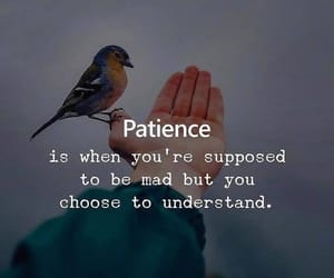 life, english quotes, and patience image