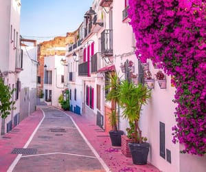 spain, travel, and pink image