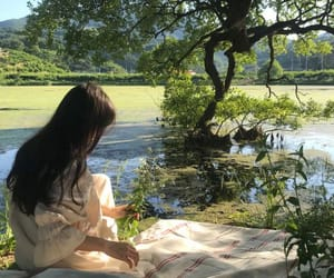 aesthetics, nature, and picnic image