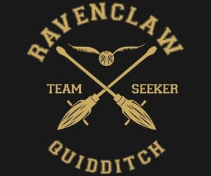 quidditch, ravenclaw, and team image