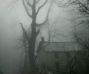 house, dark, and tree image