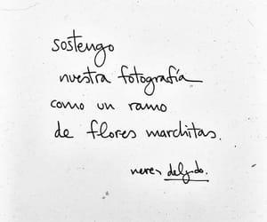 literatura, frases en español, and poesía image