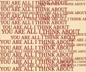 quotes, red, and words image