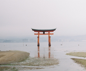 japan, shrine, and water image