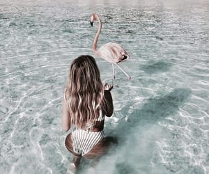 travel, ocean, and summer image