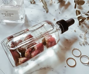 flowers, aesthetic, and perfume image