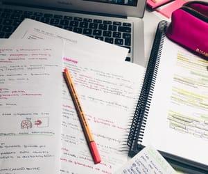 biology, Estudio, and girl image