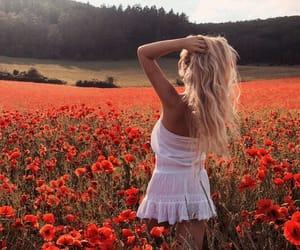 beautiful, inspiration, and poppy image