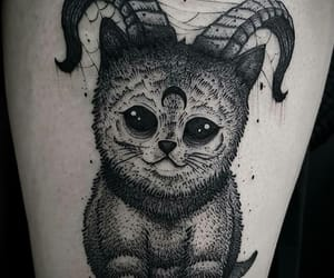 666, black, and cat image