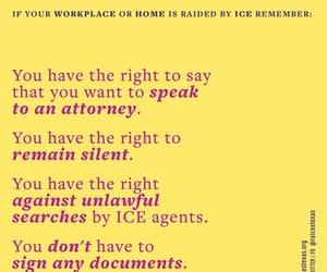 ice, deport, and deportation image
