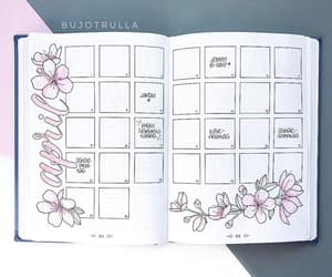 monthly, bujo, and bullet journal image
