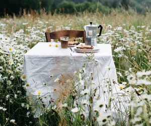 breakfast, countryside, and coffee image