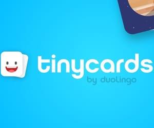 tinycards and duolingo image