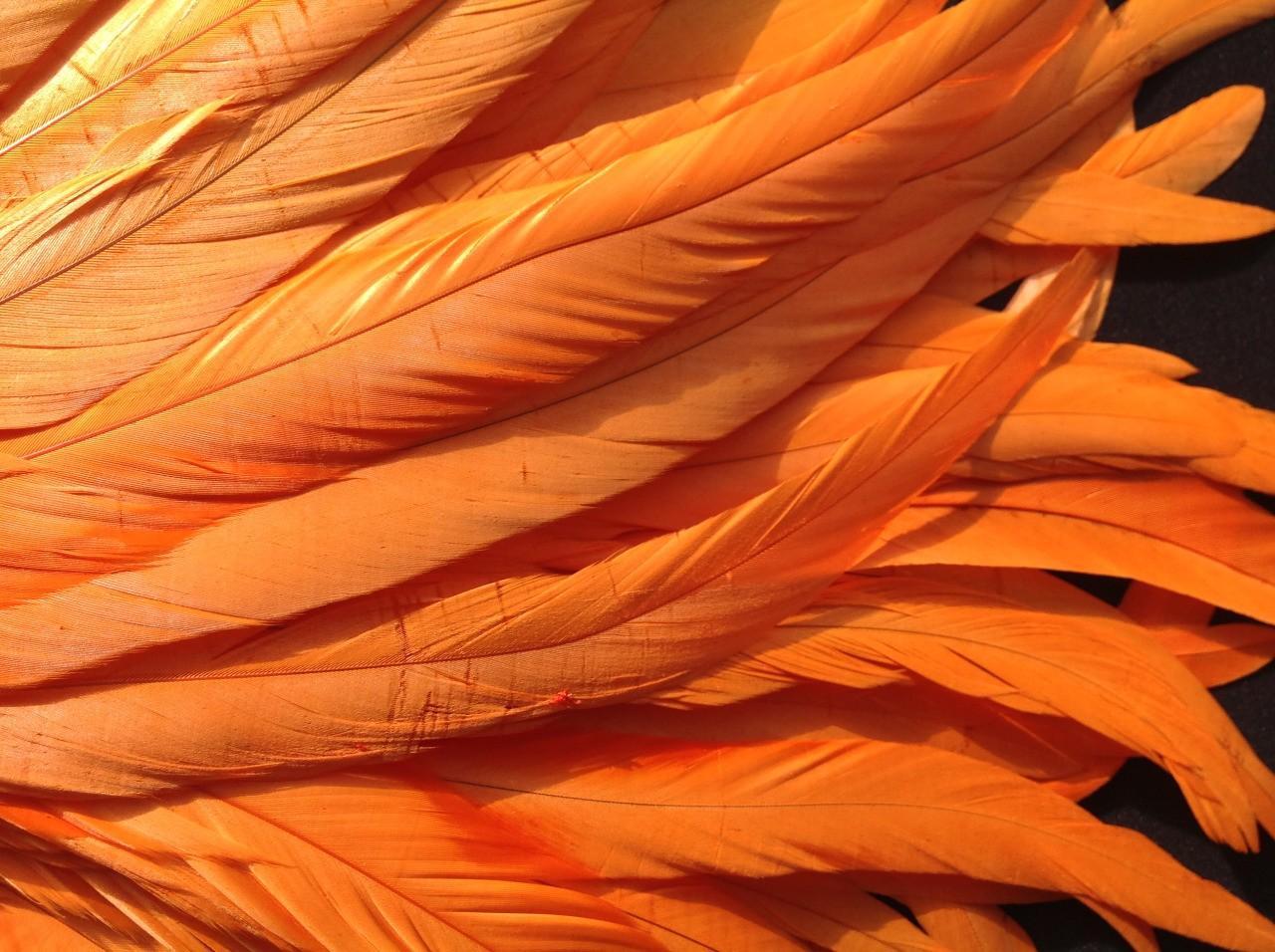 оранжевые фотки тумблер это значит