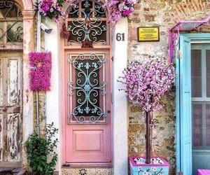 door, flowers, and pink image