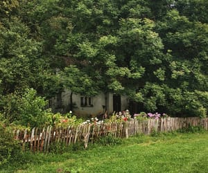 cottage, countryside, and fence image