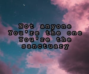 aesthetic, inlove, and sanctuary image