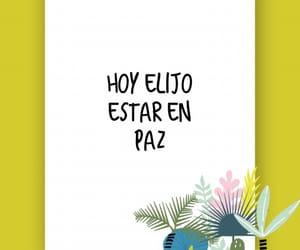 paz and hoy elijo image