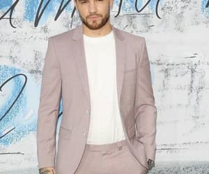 summer party, liam payne, and niall horan image