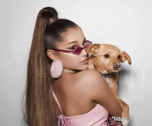 dog, ariana, and ariana grande image