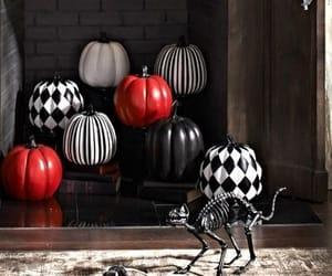 black, pumpkin, and cat image