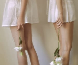 flowers, white, and girls image