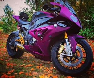 bikes, motorcycles, and purple image