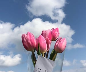Best, flowers, and nice image