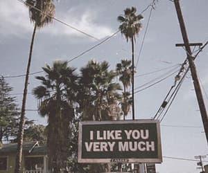 like, palms, and love image