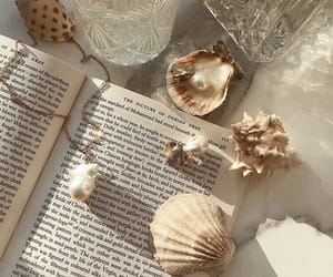 book, shell, and aesthetic image