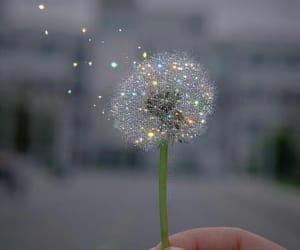 glitter and magic image