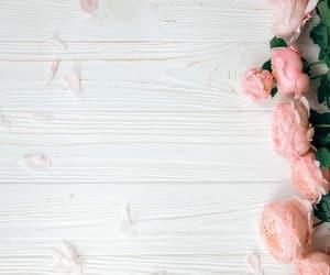 flores, rosa, and madera image