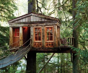 house, photography, and tree house image