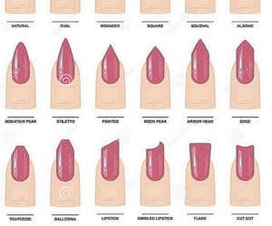 nail, nails, and nail shapes image