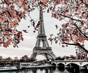 paris, autumn, and fall image