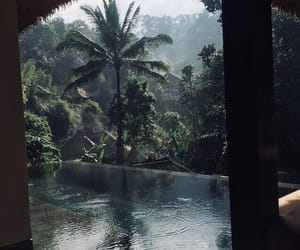 travel, nature, and pool image