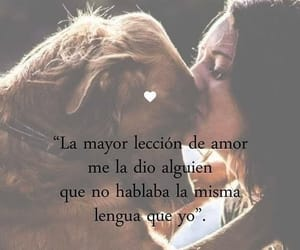 frases, perros, and mascota image