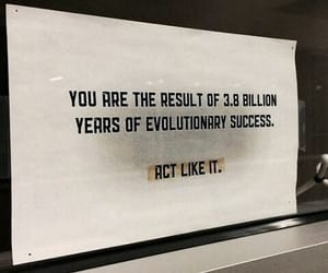 quotes and evolution image