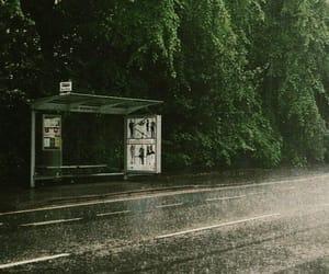 green, aesthetic, and rain image