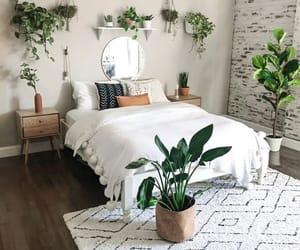 amazing, decor, and home image
