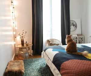 apartment, bedroom, and cosy image