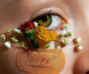 flowers, hope, and aesthetic image