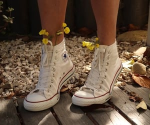 aesthetic, converse, and flowers image