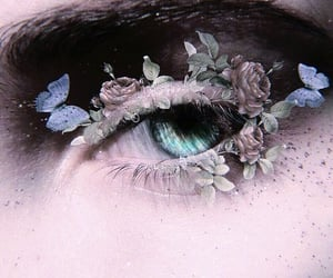 aesthetic, butterflies, and eye image