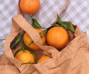 orange, fruit, and summer image