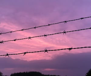 aesthetic, Barbed Wire, and clouds image
