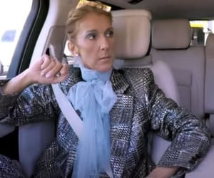 celine dion and reaction image